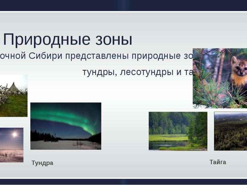 Природные зоны В ВосточнойСибирипредставленыприродныезоны  тундры, лесот...