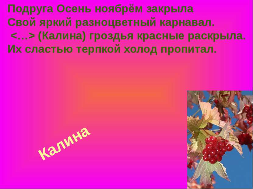 Калина Подруга Осень ноябрём закрыла Свой яркий разноцветный карнавал. (Калин...