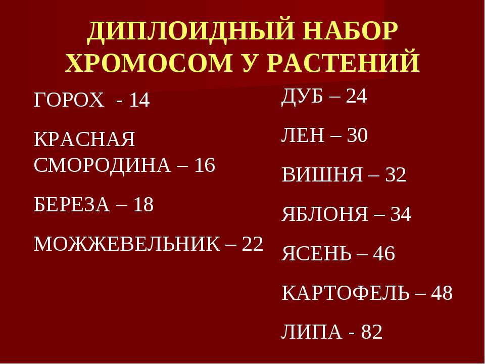 ДИПЛОИДНЫЙ НАБОР ХРОМОСОМ У РАСТЕНИЙ ГОРОХ - 14 КРАСНАЯ СМОРОДИНА – 16 БЕРЕЗА...