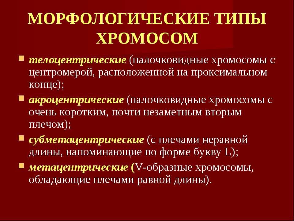 МОРФОЛОГИЧЕСКИЕ ТИПЫ ХРОМОСОМ телоцентрические (палочковидные хромосомы с цен...
