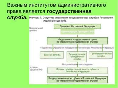 Важным институтом административного права является государственная служба.