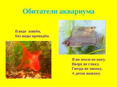 Обитатели аквариума В воде живём, Без воды пропадём. Я по земле не хожу, Ввер...