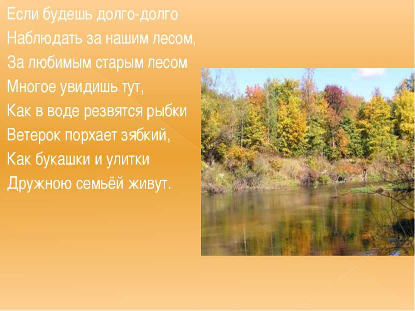 Если будешь долго-долго Наблюдать за нашим лесом, За любимым старым лесом Мно...