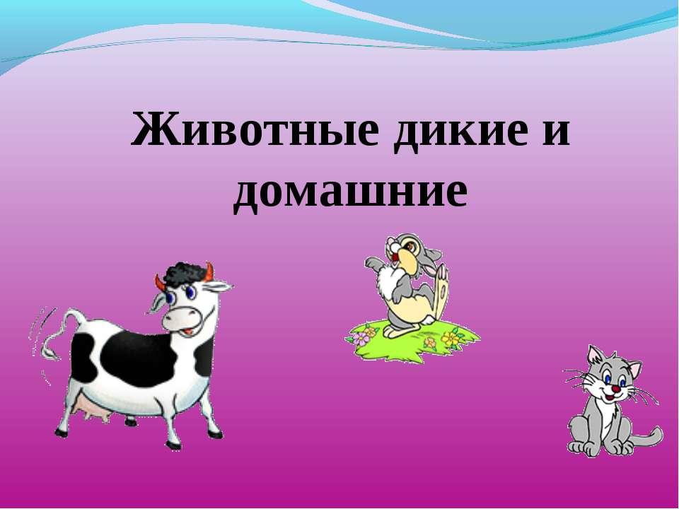Животные дикие и домашние