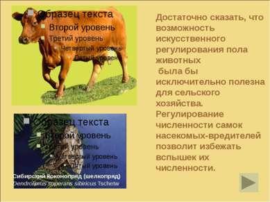 Достаточно сказать, что возможность искусственного регулирования пола животны...