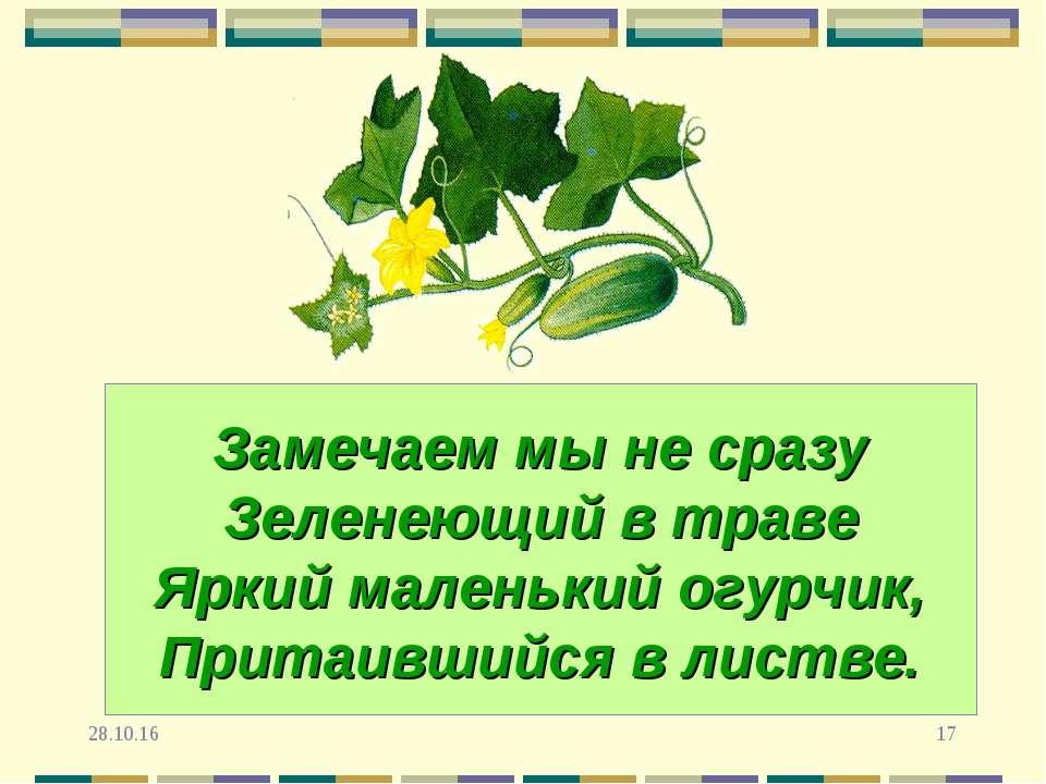 * * Замечаем мы не сразу Зеленеющий в траве Яркий маленький огурчик, Притаивш...