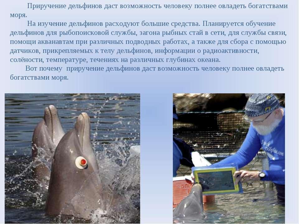 Приручение дельфинов даст возможность человеку полнее овладеть богатствами мо...