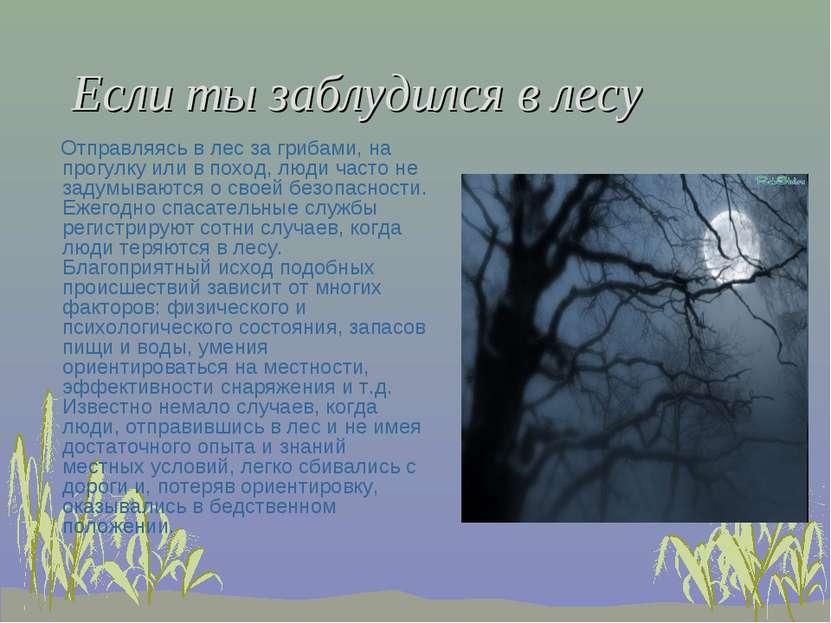 Если ты заблудился в лесу Отправляясь в лес за грибами, на прогулку или в пох...