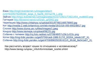 Ежик http://img0.liveinternet.ru/images/attach/c/3/76/205/76205040_large_0_5a...