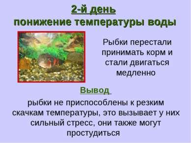 Рыбки перестали принимать корм и стали двигаться медленно 2-й день понижение ...