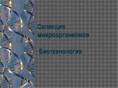 Селекция микроорганизмов Биотехнология