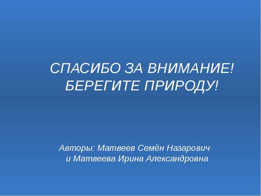 Авторы: Матвеев Семён Назарович и Матвеева Ирина Александровна СПАСИБО ЗА ВНИ...