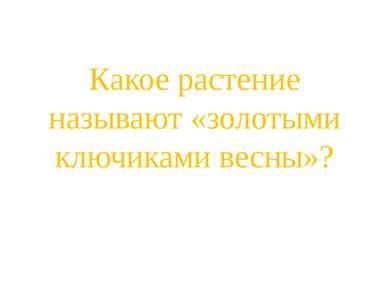 Какое растение называют «золотыми ключиками весны»?