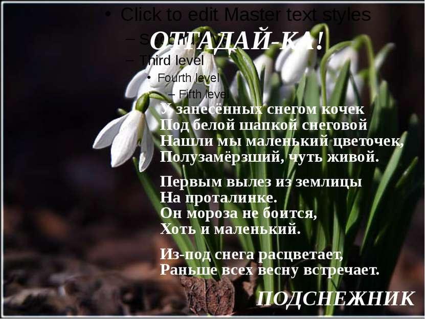 ОТГАДАЙ-КА!