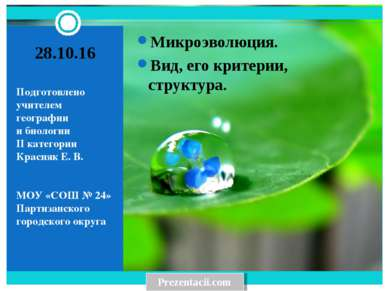 Подготовлено учителем географии и биологии II категории Красняк Е. В. МОУ «СО...