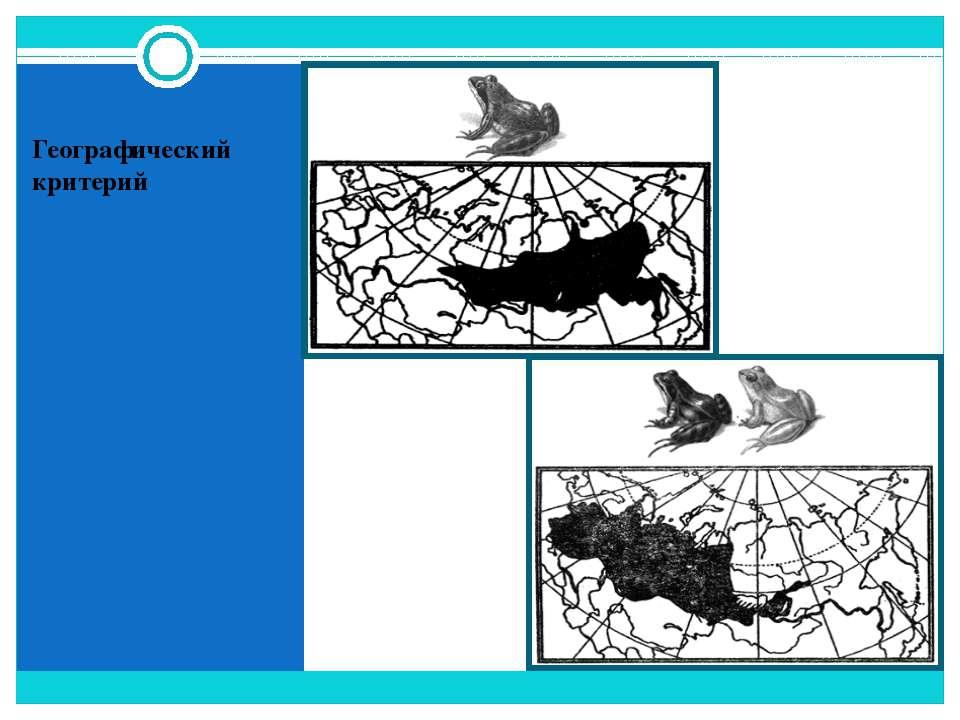 Географический критерий