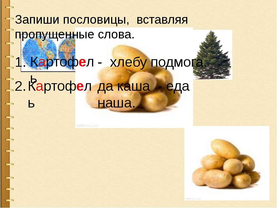 , + ОФ + Запиши пословицы, вставляя пропущенные слова. Картофель - хлебу подм...