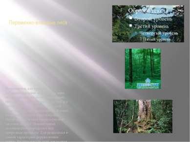 Переменно-влажные леса Встречаются, как правило, в субэкваториальных поясах. ...