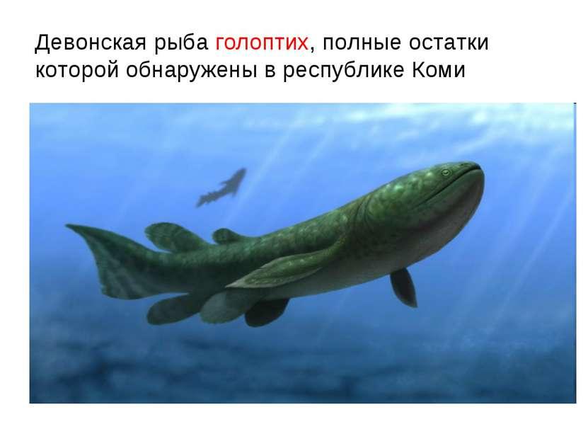 Девонская рыба голоптих, полные остатки которой обнаружены в республике Коми
