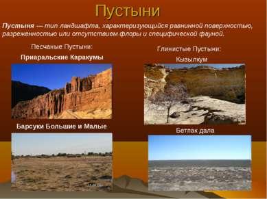 Пустыни Кызылкум Бетпак дала Барсуки Большие и Малые Песчаные Пустыни: Приара...