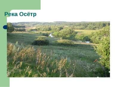 Река Осётр