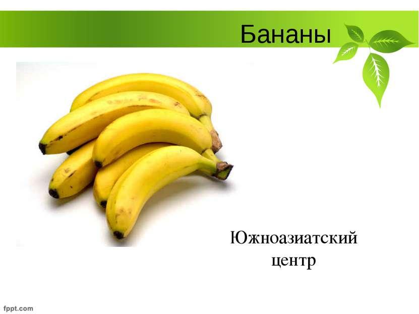 Бананы Южноазиатский центр