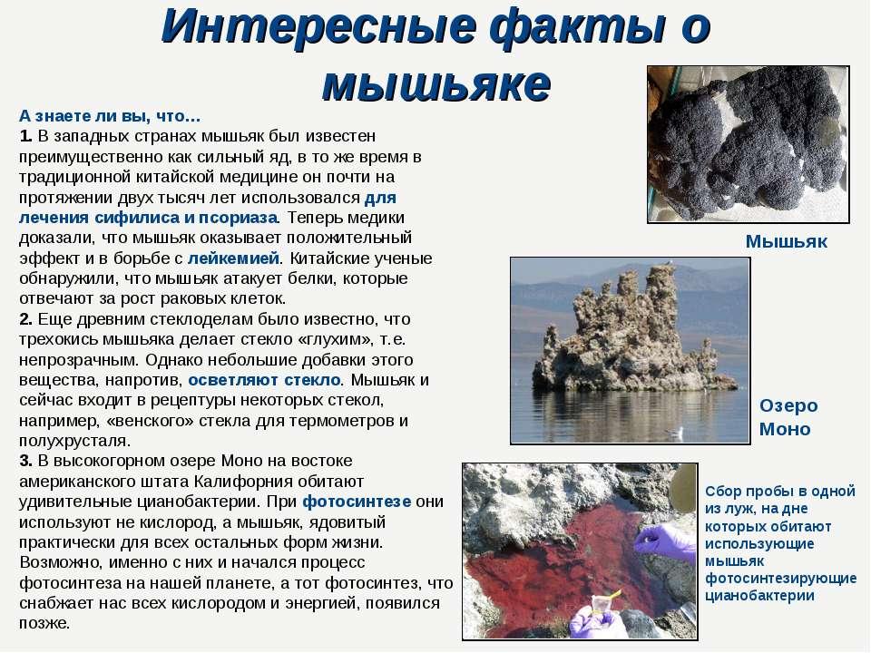 Интересные факты о мышьяке А знаете ли вы, что… 1. В западных странах мышьяк ...