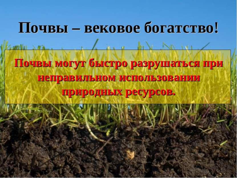 Почвы – вековое богатство! Почвы могут быстро разрушаться при неправильном ис...