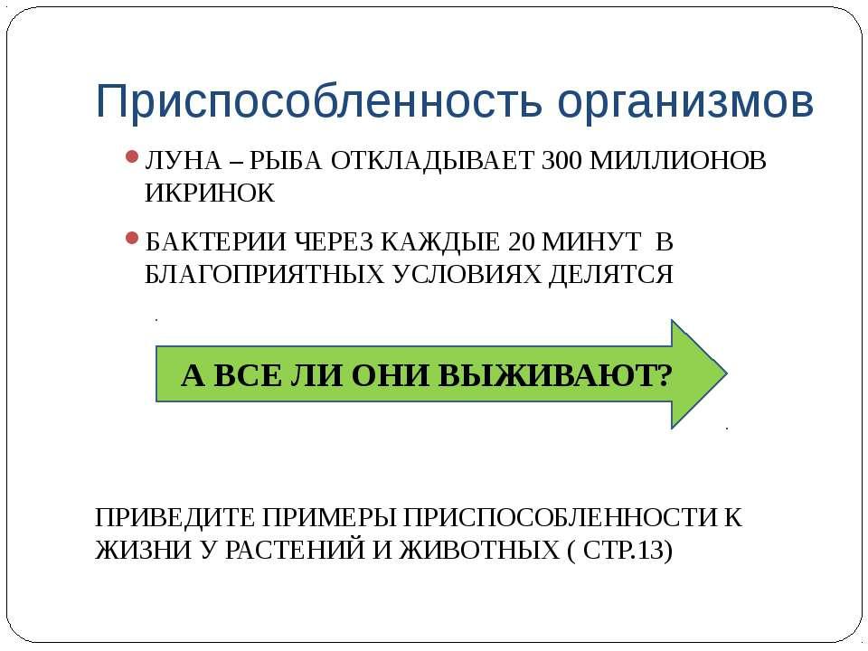 Приспособленность организмов ЛУНА – РЫБА ОТКЛАДЫВАЕТ 300 МИЛЛИОНОВ ИКРИНОК БА...