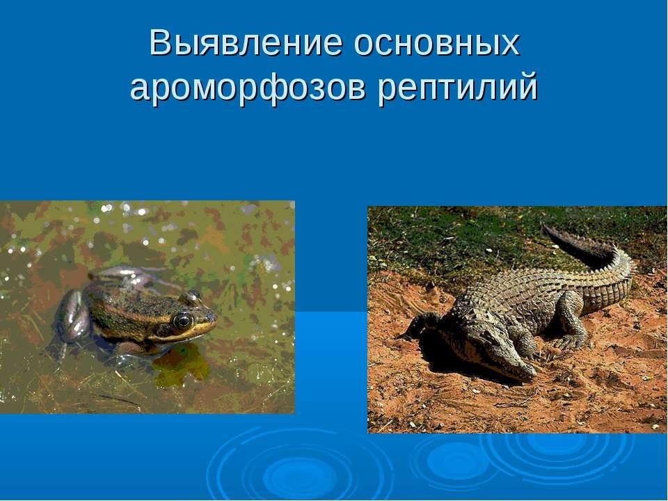 Выявление основных ароморфозов рептилий