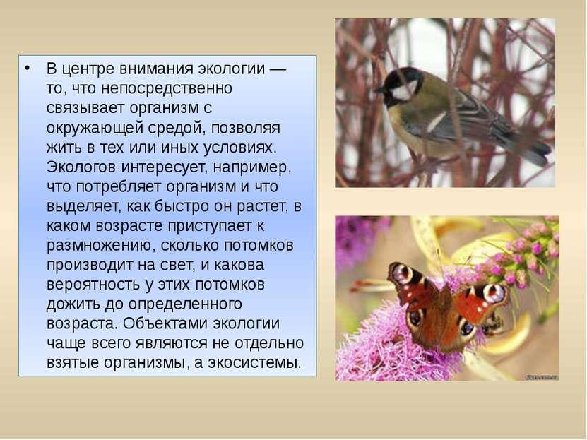 В центре внимания экологии — то, что непосредственно связывает организм с окр...