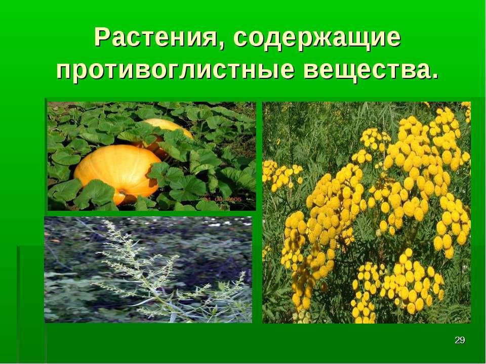 * Растения, содержащие противоглистные вещества.