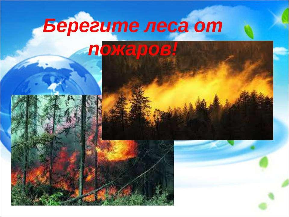Берегите леса от пожаров!