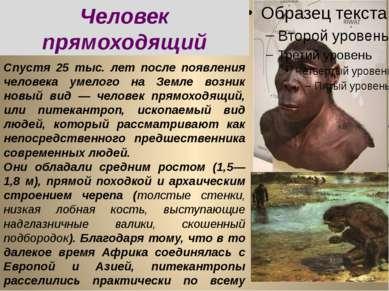 Спустя 25 тыс. лет после появления человека умелого на Земле возник новый вид...