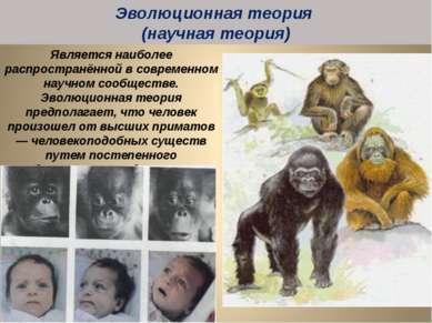 Является наиболее распространённой в современном научном сообществе. Эволюцио...