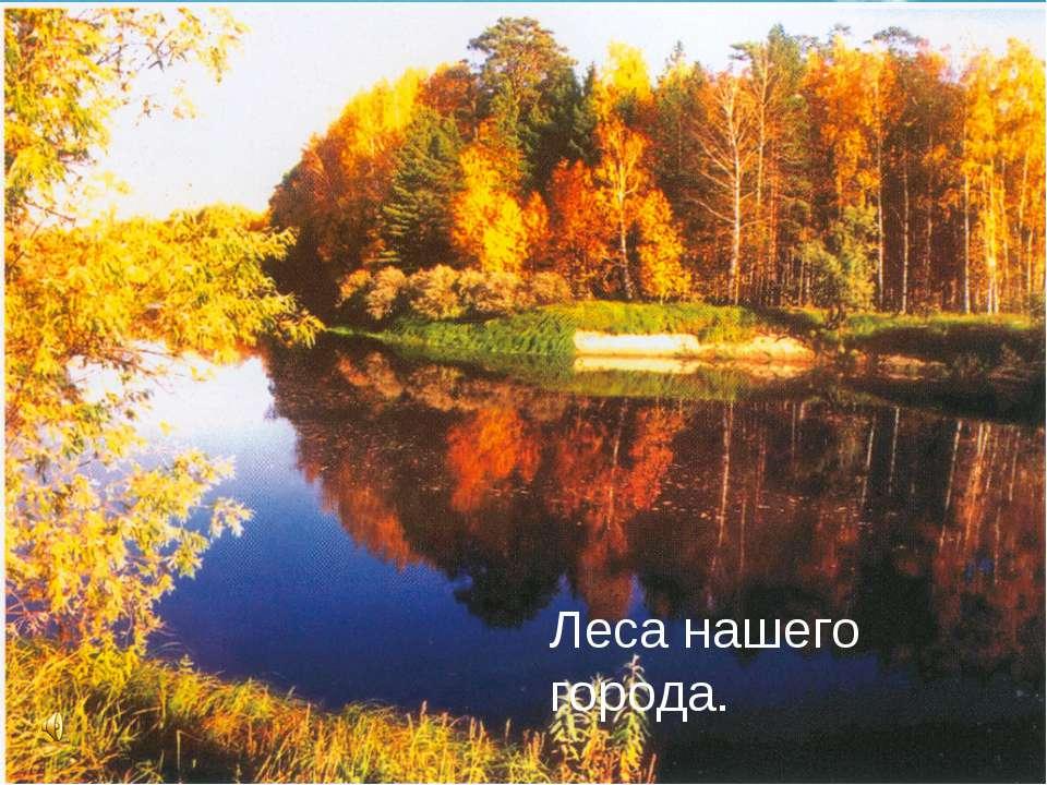 Лес –своеобразный, богатый и сложный мир, преданный, бескорыстный и постоянны...