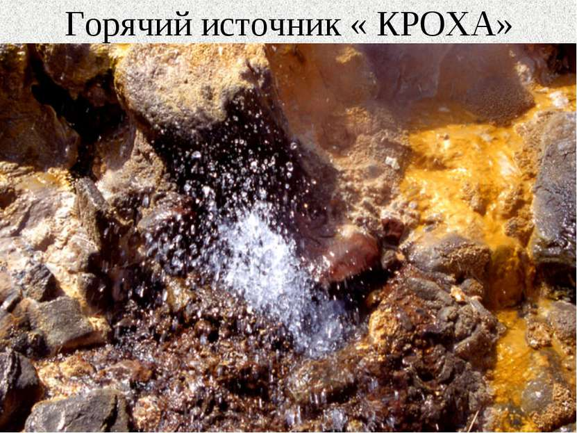 Горячий источник « КРОХА»