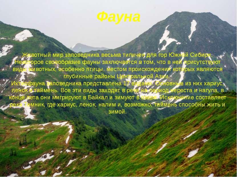 Фауна Животный мир заповедника весьма типичен для гор Южной Сибири. Некоторое...