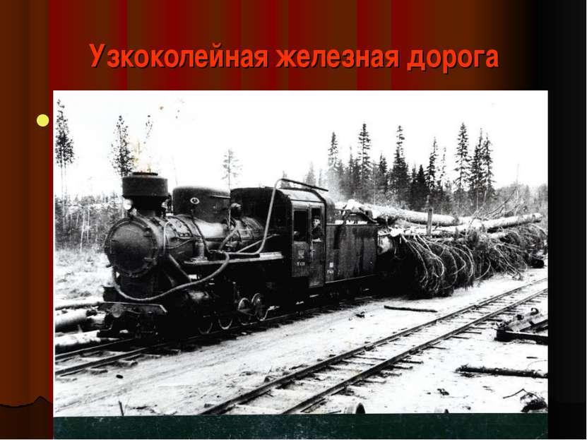 Узкоколейная железная дорога Предназначена для перевозки заготовленной в лесу...