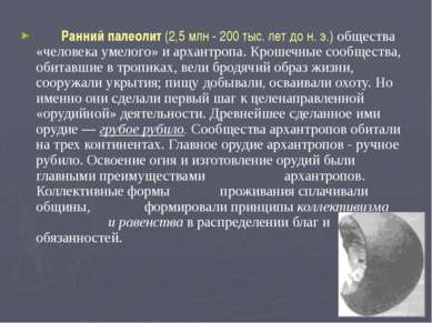 Ранний палеолит (2,5 млн - 200 тыс. лет до н. э.) общества «человека умелого»...