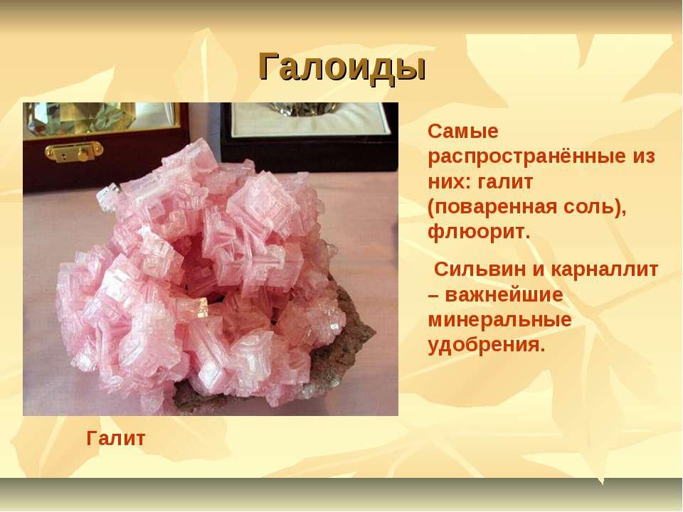 Галоиды Галит Самые распространённые из них: галит (поваренная соль), флюорит...
