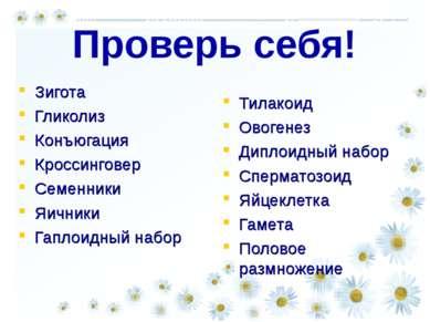 Проверь себя! Зигота Гликолиз Конъюгация Кроссинговер Семенники Яичники Гапло...