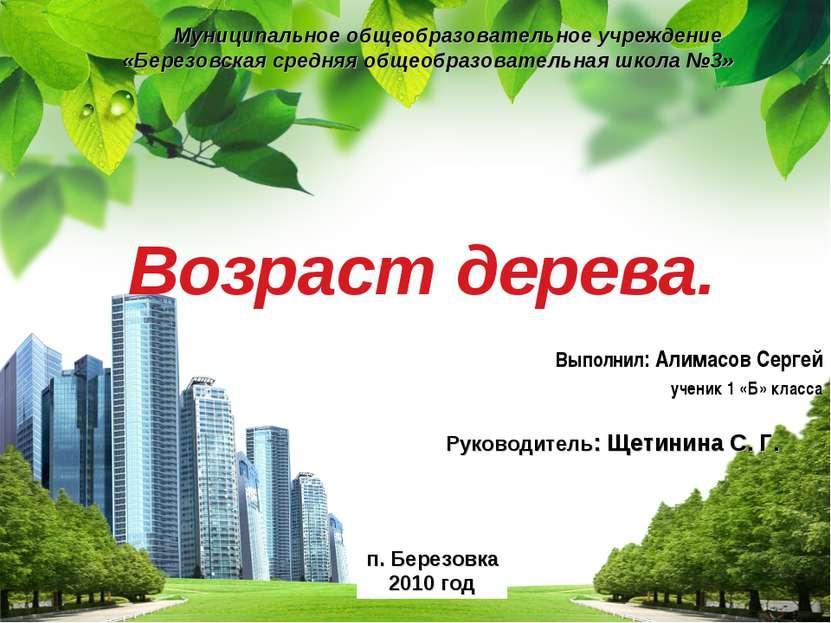 Возраст дерева. Выполнил: Алимасов Сергей ученик 1 «Б» класса Муниципальное о...