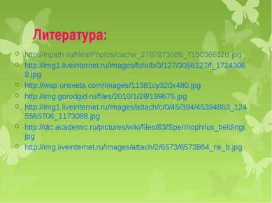 Литература: http://inpath.ru/files/Photos/cache_2787873586_715036612d.jpg htt...