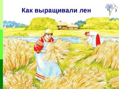 Как выращивали лен
