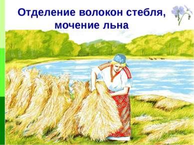 Отделение волокон стебля, мочение льна
