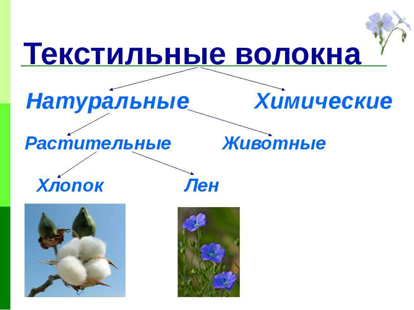 Текстильные волокна Натуральные Химические Растительные Животные Хлопок Лен