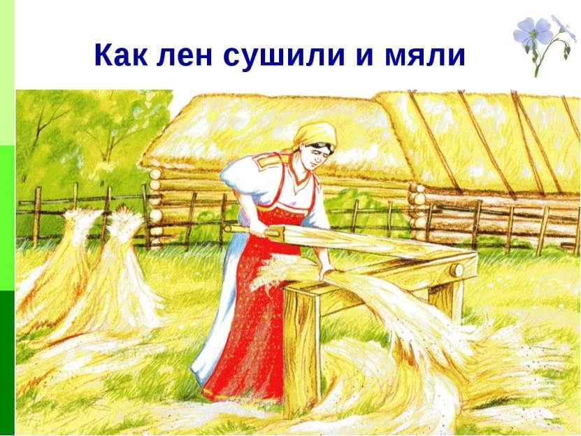 Как лен сушили и мяли