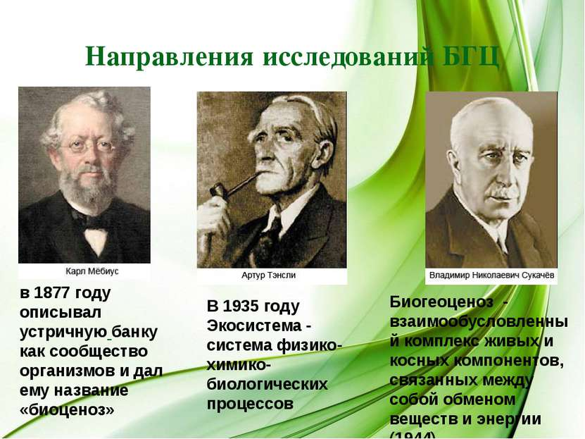 Направления исследований БГЦ в 1877 году описывал устричную банку как сообщес...