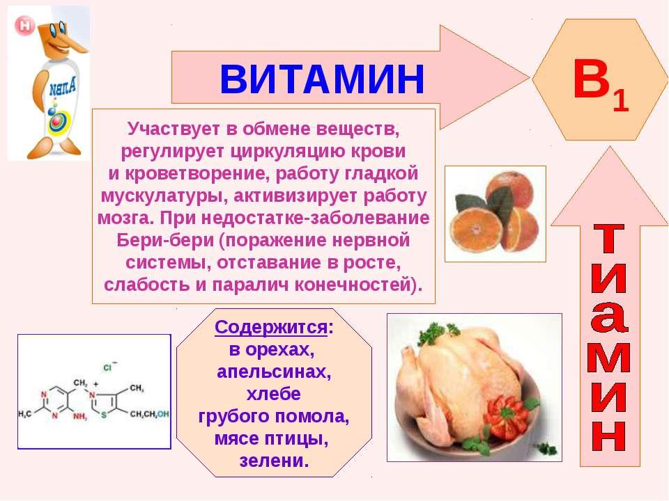 ВИТАМИН B1 Участвует в обмене веществ, регулирует циркуляцию крови и кроветво...
